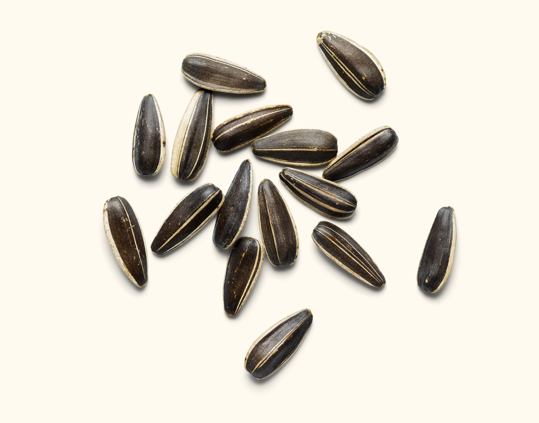 1913_Sunflower_Seeds_R2_simp
