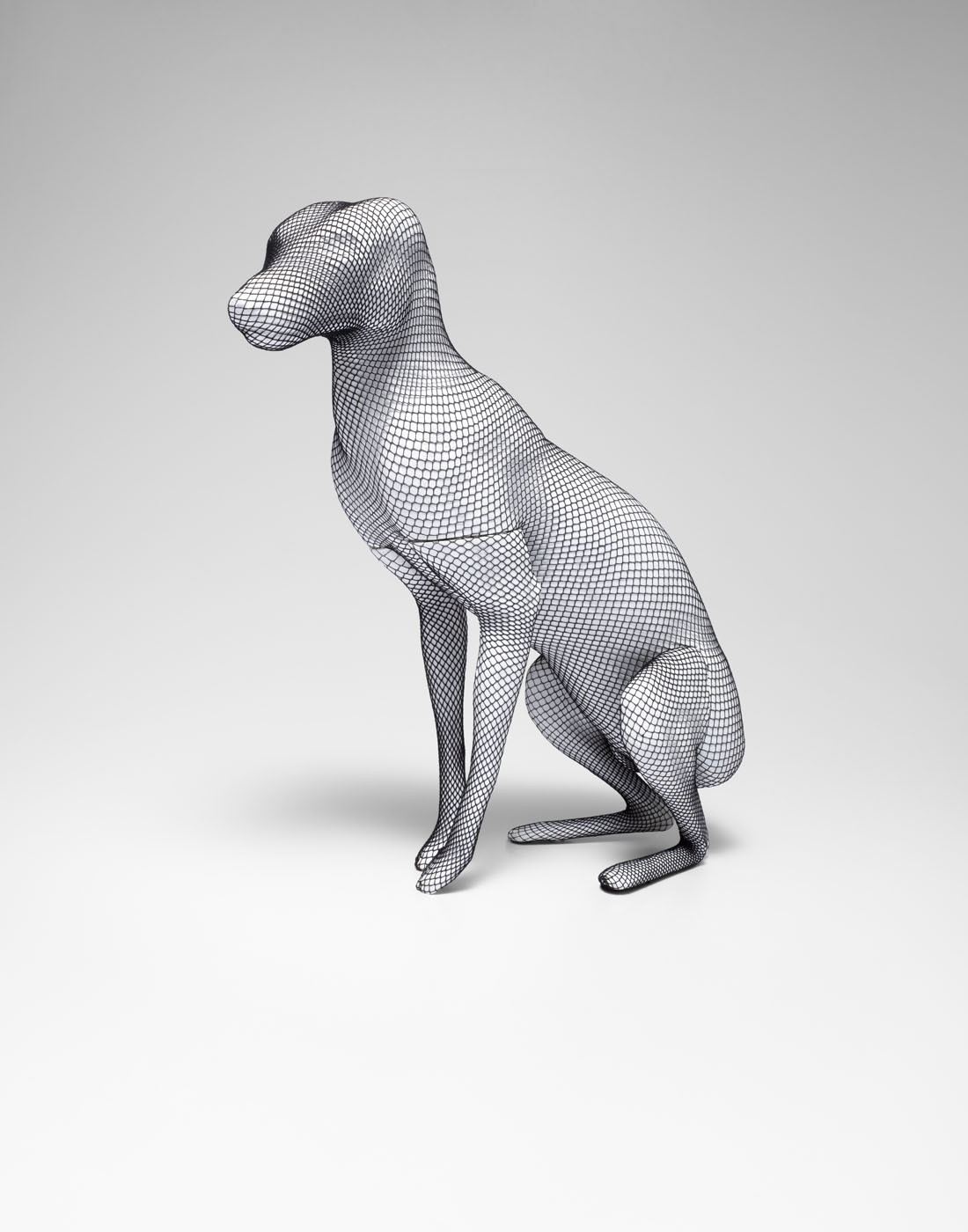 Wire Net Dog Retouch Comp_flat